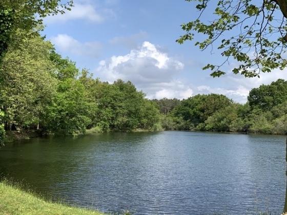 En Nouvelle Aquitaine, ce camping est situé sur un bel emplacement en rétro littoral.