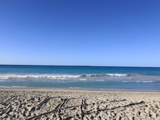 Nouvelle Aquitaine. Camping à vendre à  2 kms des plages