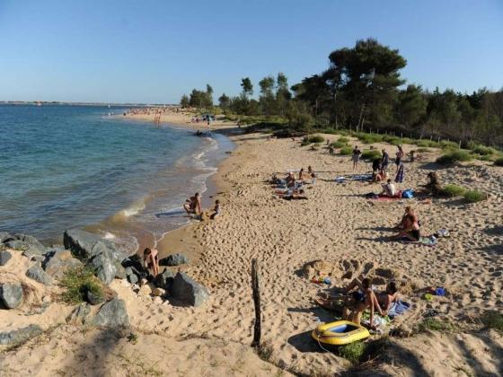Nouvelle Aquitaine. Camping à vendre à  30 kms des plages