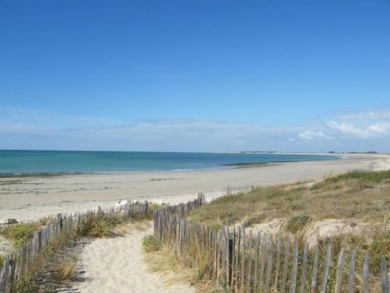Nouvelle Aquitaine. Ce camping est à vendre au bord des plages de l'Atlantique